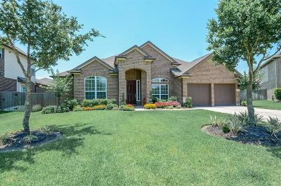 Katy Single Family Home For Sale: 6006 Green Meadows Lane