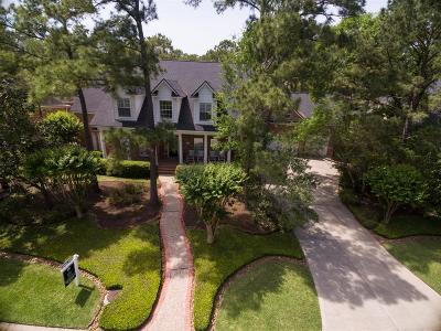 The Woodlands Single Family Home For Sale: 99 Taylor Point Drive