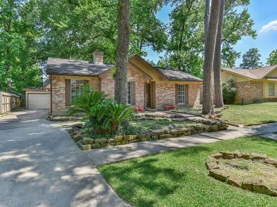 Houston Single Family Home For Sale: 21406 Four Oaks Drive