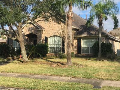 Pearland Single Family Home For Sale: 3325 Irish Shores Lane