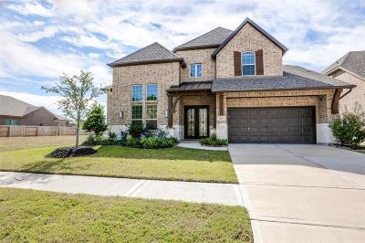 Porter Single Family Home For Sale: 25238 Birchwood Springs Avenue