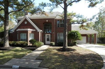Single Family Home For Sale: 5202 Summer Snow Drive
