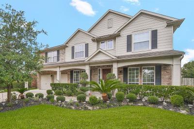 Houston Single Family Home For Sale: 16319 Jadestone Terrace Lane