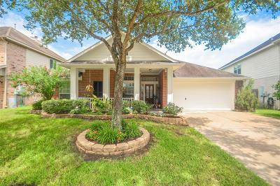 League City Single Family Home For Sale: 934 Lilac Pointe