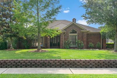 Houston Single Family Home For Sale: 2223 Woodside Drive