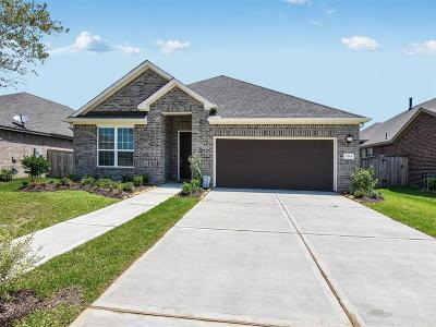 Pearland Single Family Home For Sale: 2213 Hidden Meadow Lane