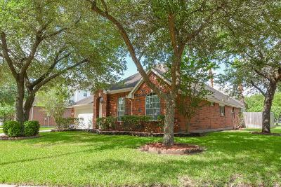 Sugar Land Single Family Home For Sale: 506 Ivy Cross Lane N