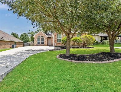 Montgomery Single Family Home For Sale: 522 Fantasy Lane