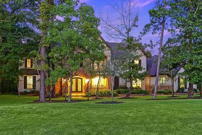 Spring Single Family Home For Sale: 5603 N Ossineke Drive
