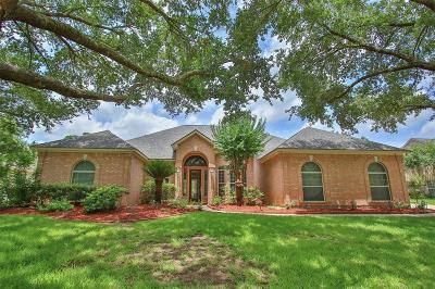 Tomball Single Family Home For Sale: 23711 Indian Hills Circle