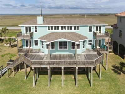 Galveston Single Family Home For Sale: 19619 Shores Drive Drive