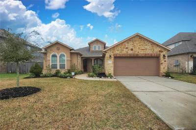 League City Single Family Home For Sale: 2213 Trocadero Lane