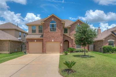 Single Family Home For Sale: 7478 Durango Creek Drive