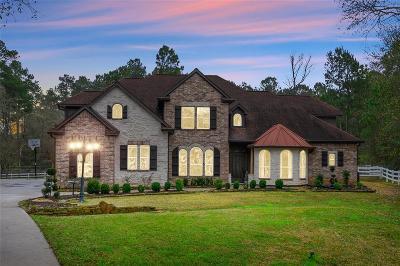 Magnolia Single Family Home For Sale: 11834 Rainy Oaks Drive