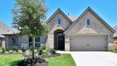 Pearland Single Family Home For Sale: 13607 Aspen Ridge Lane