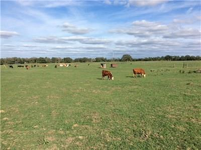 Lee County Country Home/Acreage For Sale: 00 Cr 113