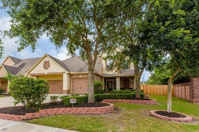 Sugar Land Single Family Home For Sale: 702 Newington Lane