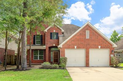 Conroe Single Family Home For Sale: 266 Fairwind Trail Drive