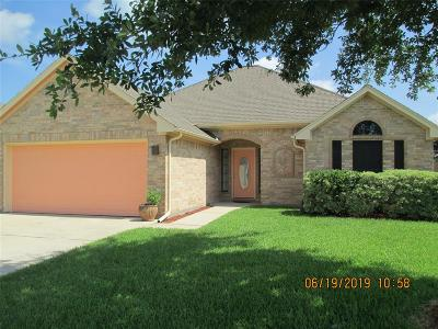 Galveston County Single Family Home For Sale: 16 Prairie Oaks Drive