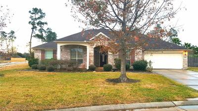 Spring Single Family Home For Sale: 24518 Harness Path Court