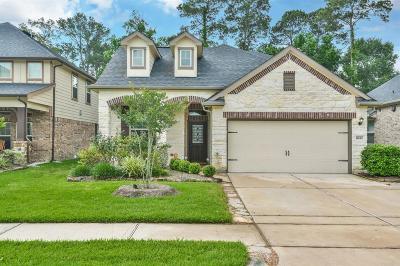 Houston Single Family Home For Sale: 8630 Lighthouse Lake Lane