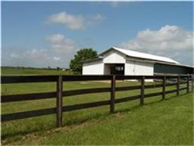 Katy Farm & Ranch For Sale: 26541 Beckendorff Road