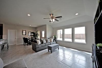 Rosenberg Single Family Home For Sale: 8715 Jamison Drive