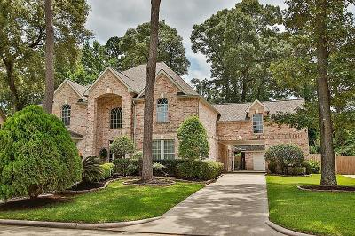 Tomball Single Family Home For Sale: 14123 Spring Pines Drive