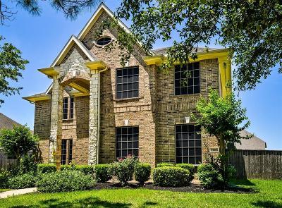 Rosharon Single Family Home For Sale: 13801 Cove Landing Lane