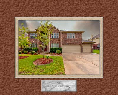 Spring Single Family Home For Sale: 3218 Ellscott Drive