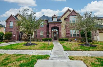 Sugar Land Single Family Home For Sale: 5310 Briarwick Meadow Lane