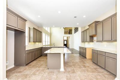 Conroe Single Family Home Pending: 10094 Black Maple Drive
