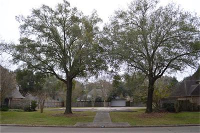 Katy Residential Lots & Land For Sale: 707 Dominion Drive