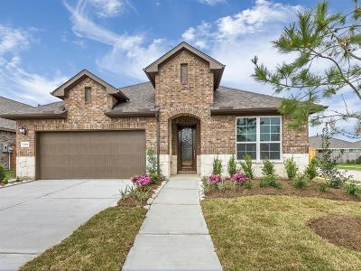 Pearland Single Family Home For Sale: 2309 Jessamine Heights Lane
