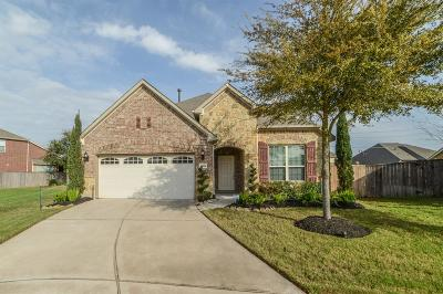 Katy Single Family Home For Sale: 4806 Elenas Bend Court