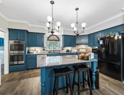 Houston Single Family Home For Sale: 4123 Rosebank Drive