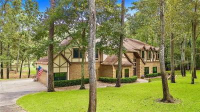 Conroe Single Family Home For Sale: 11586 Willowridge Circle