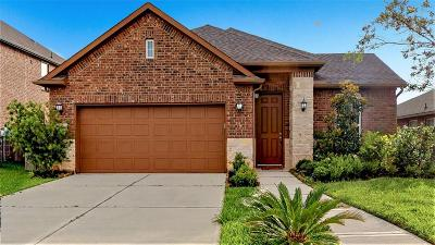Pearland Single Family Home For Sale: 2309 Grayson Valley