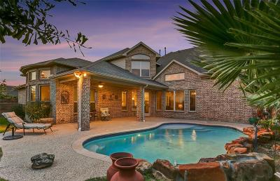 Katy Single Family Home For Sale: 2711 Briarstone Point Lane