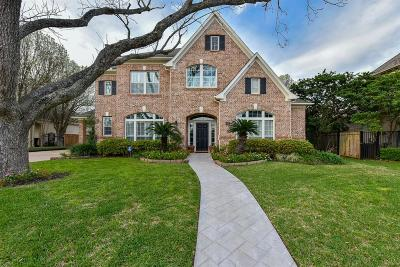 Sugar Land Single Family Home For Sale: 35 Schubach Drive