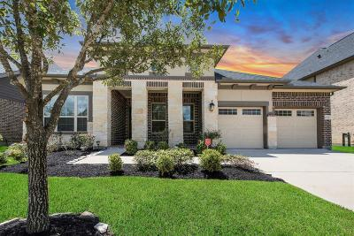Katy Single Family Home For Sale: 29211 Erica Lee Court