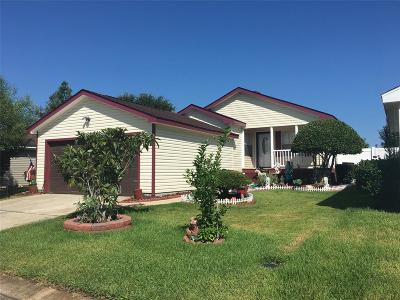 Tomball Single Family Home For Sale: 10026 Berrypatch Lane