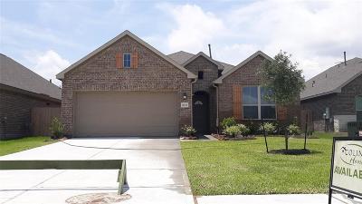 Texas City Single Family Home For Sale: 8721 Explorer Drive