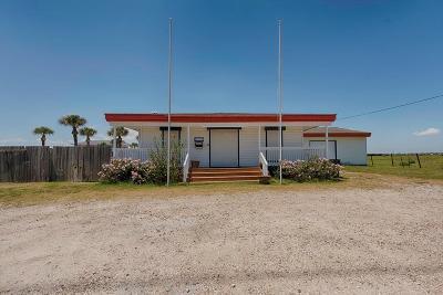 Galveston Single Family Home For Sale: 17614 Termini San Luis Pass Road