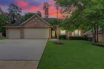 Conroe Single Family Home For Sale: 159 Lakeside Drive