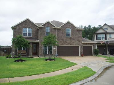 Tomball TX Single Family Home For Sale: $330,000