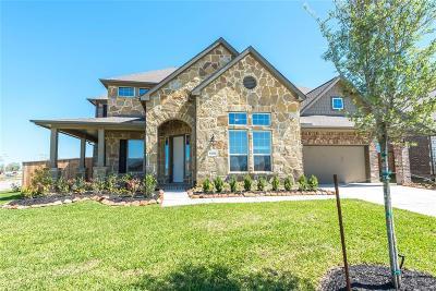 Lakes Of Savannah Single Family Home For Sale: 13707 Citruswood Park Lane