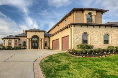 Montgomery Single Family Home For Sale: 109 Waterstone Drive