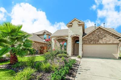 Porter Single Family Home For Sale: 19203 Painted Boulevard