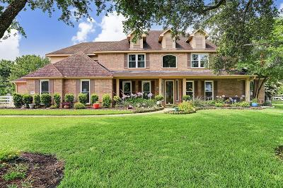 Pearland Single Family Home For Sale: 6201 Ravenwood Drive